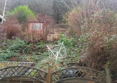 Shrub and Garden Tidy
