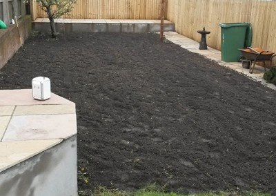 Lawn Replacement