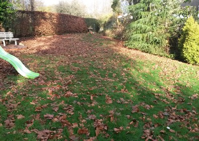 Clearing Garden Leaves